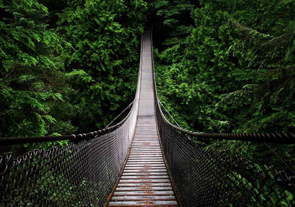 Tuindoek brug uit afbeeldingengallerij