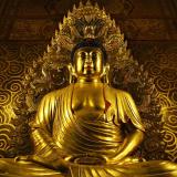 Shaolin doek online kopen