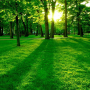 Tuinposter online bestellen met afbeelding